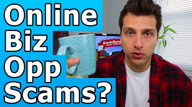 Are Online Business Opportunities a Scam?